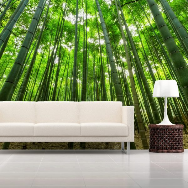 WALLPAPER Wall Mural Nature Category Bamboo Forest Per Square Meter