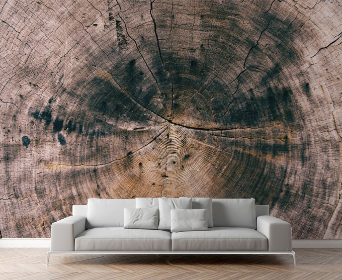 Wallpapers Wall Mural Texture Category Wood Picture Per Square Meter