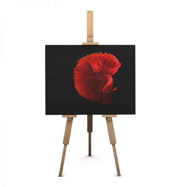 frame_canvas_animal8