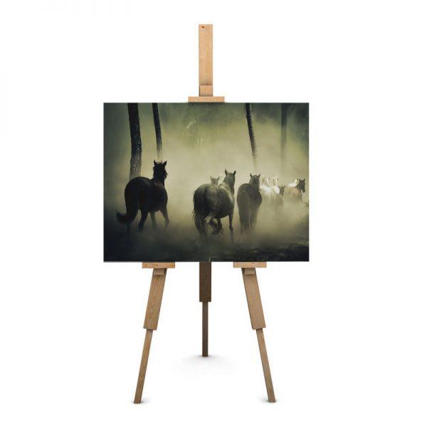 frame_canvas_animai21